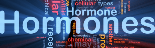 bioidentical hormone orlando biote